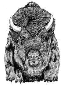 Bison von Condor Artworks