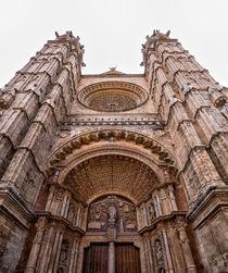 Catedral de Mallorca by Tomas Gregor