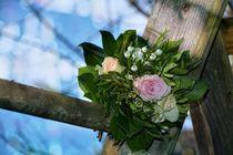 Rosen - Bouquet von Claudia Evans