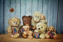 Teddy ́s Gruppenbild von Claudia Evans