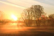 Nebelmorgen von Bernhard Kaiser