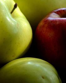 Apples by Tim Seward