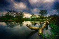 Wild water....... by Stefan Kierek