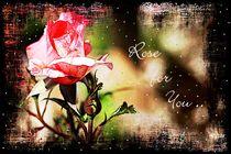 Rose For You  von Sandra  Vollmann