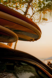 Carpool by Teresa Oliveira da Silva
