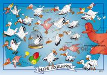 Kleine Vogelkunde von Roland H. Palm
