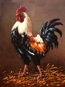 Rooster - the master of the yard by Dusan Vukovic