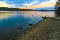 Whitlingham Lake at Dusk, Norwich, U.K by Vincent J. Newman