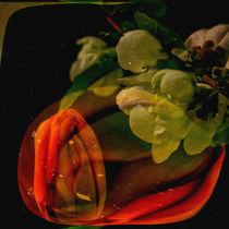 abstrakt im Quadrat -Tulpe mit Quittenblüte by Chris Berger