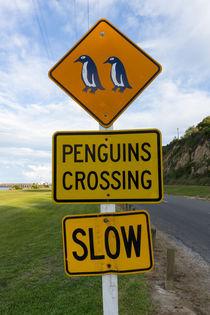 Penguins Crossing Road Sign von globusbummler