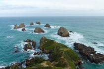 Nugget Point, Catlins Neuseeland von globusbummler