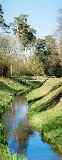 Wald und Wasser by Stephan Gehrlein