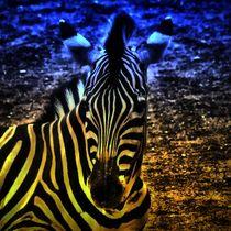 Fantasy Zebra by kattobello