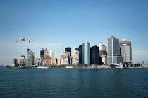 New York City Skyline by Raphael Murr