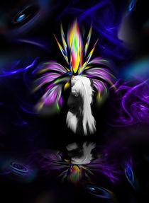 Blütenträume - Fantasie von Walter Zettl