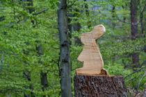 Der Osterhase ist im Wald von Ronald Nickel