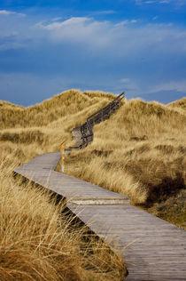 Dünenpfad - Insel Amrum von AD DESIGN Photo + PhotoArt