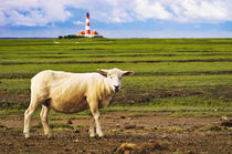 Westerhever Impression von AD DESIGN Photo + PhotoArt