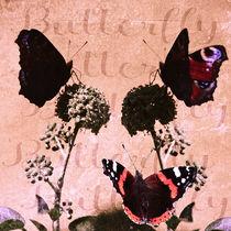 Butterfly - Treffpunkt Efeu by Chris Berger