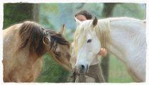 Die mit den Pferden spricht von Clemens Greiner