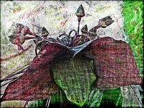 ART of NaTuRe von Sandra Vollmann