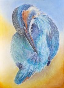 Eisvogel / Kingfisher von Anna  Kirsten Helmke