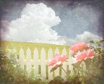Welcome Spring Rose von Karen Black