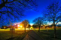 Eaton Park at Sunset, Norwich, U.K by Vincent J. Newman