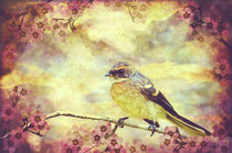 Little Vintage Songbird von Karen Black