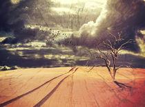 Desert Apocalypse von Karen Black