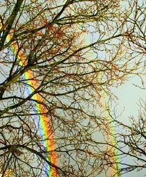 Regenbogens von Edmond Marinkovic