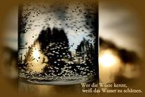 Wer die Wüste kennt ... by Heidrun Carola Herrmann