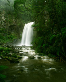 'Waterfall in Rainforest, Victoria, Otway National Park, Australia' by Bastian Linder