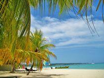 Jamaika by assy