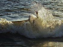 untergetaucht und abgetaucht in einer Welle by assy
