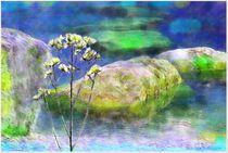 'Natur Art ' by Sandra  Vollmann