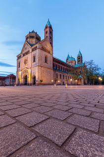 Dom zu Speyer by Christine Berkhoff