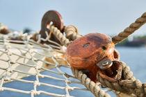 Netze und Taue an Bord von renard