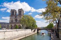 Kathedrale Notre-Dame de Paris von Ralph Patzel