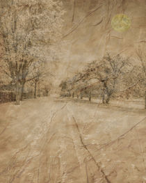 Snow in April by Michael Naegele