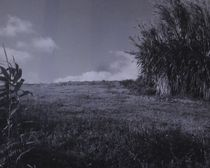 Inselland von art-dellas
