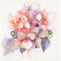 rosadas von aerostato