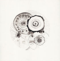 micrografías V by aerostato