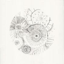 micrografías IV by aerostato