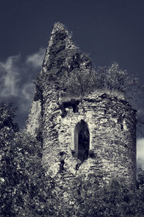 Burg Sayn von AD DESIGN Photo + PhotoArt