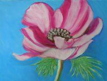 Anemone by rita-markgraefe