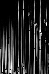 Orgelpfeifen von Bastian  Kienitz