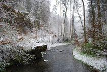 winter in the midth of spring... 1 von loewenherz-artwork
