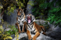 tiger, screaming tiger von hottehue