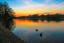 Sunset at Whitlingham Lake, Norwich, U.K  von Vincent J. Newman